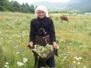 mother katerina from iballa puka albanien by renovabis pfarrbriefservice